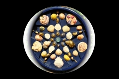 "SALTDEAN SHORE SHELLS: 18"" CIRCLE £150"